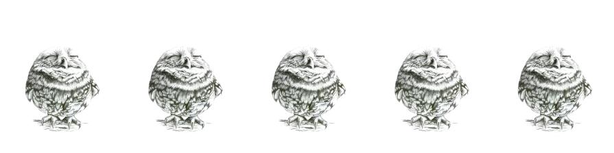 design-ohne-titel-12